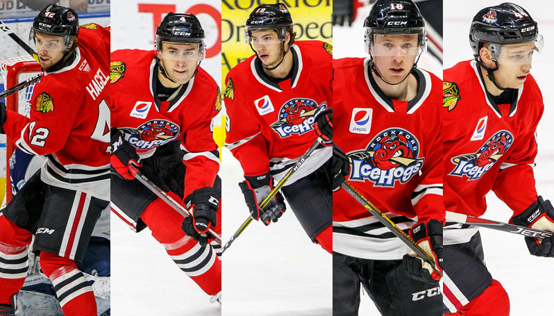 feec30bac FIVE ICEHOGS ON BLACKHAWKS DEVELOPMENT CAMP ROSTER