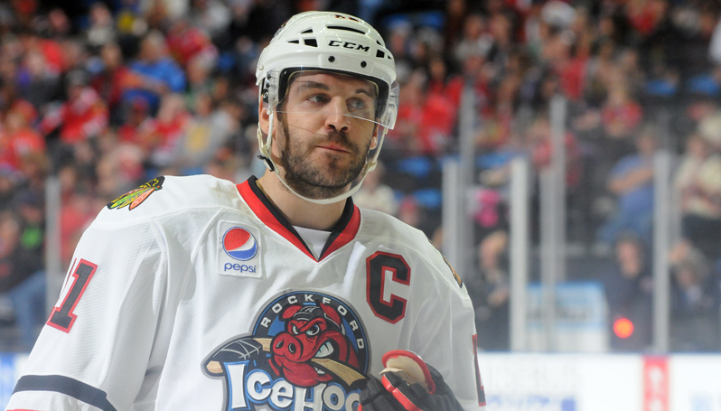 Official Website Of The Rockford Icehogs Icehogs News