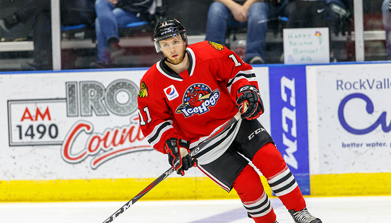 2f0950c648f Official Website of the Rockford IceHogs: IceHogs News